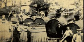 old vine barrels pics